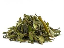 """Чай белый """" Бай Му Дань (премиум)"""" - фото 5845"""