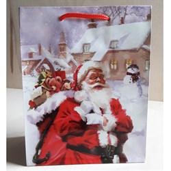 """Бумажный ламинированный пакет """"Санта Клаус"""" 18*23см. - фото 6492"""