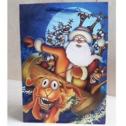 """Бумажный ламинированный пакет """"Сумасшедший Новый год"""" 22*31см. - фото 6584"""