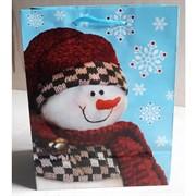 """Бумажный ламинированный пакет """"Снеговик в шарфе"""" 18*23см."""