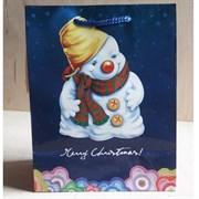 """Бумажный ламинированный пакет """"Merry Christmas"""" 18*23см."""