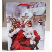 """Бумажный ламинированный пакет """"Санта Клаус"""" 18*23см."""