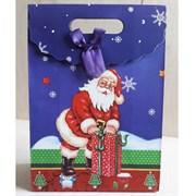"""Пакет картонный с вырубной ручкой на липучке """"Санта Клаус 2"""""""