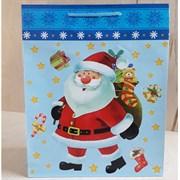 """Бумажный ламинированный пакет """"Санта"""" 26*32см."""