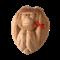 """Чай черный в кокосовом орехе """"Три обезьяны"""" (ничего не вижу, ничего не слышу, ничего не скажу) - фото 4655"""